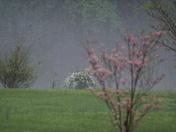 Hail Storm 31-Mar-2012 019.JPG