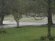 Minor Flooding 002.JPG