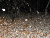 snow in Jan 20