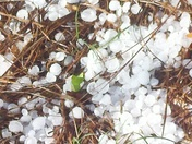 Hail in Ninety Six SC