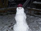 Gamecock Snowman