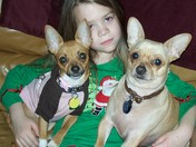 Christmas Treats Wanted