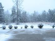 Snow storm Feb. 12 2010 005.JPG