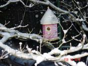 Christmas '09 and Snow '10 028.jpg