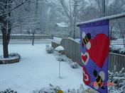 Valentine's Snow Fall