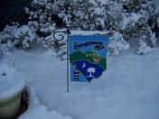 snow 27.JPG