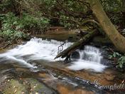 king creek falls 4
