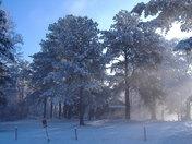 Snow..02-13-10 033.JPG