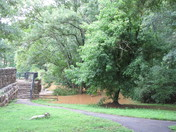 Day after Storms July 4th 2013 001.JPG