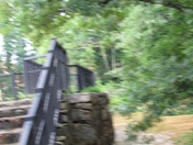 Day after Storms July 4th 2013 008.JPG