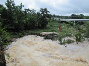 Day after Storms July 4th 2013 016.JPG