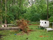 Mama's house after storm 027.JPG