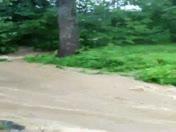 creek in tanner mills subdivision