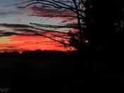 Sunset on Flatwood Rd. -003
