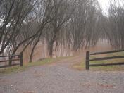 Roaring River, NC