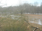 Yadkin River @Roaring River, NC