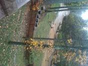Lewisville Flood