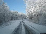 Warf Road Lexington