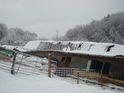 Snow and Ice Collapsed Barn