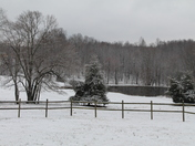 Snow in the pasture