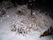 More snow in Clemmons