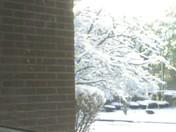 March1storm 030.jpg