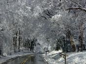 Snow! March 1 & 2, 2009 014.jpg