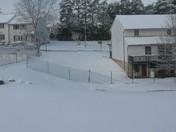 snow day 3209 001.jpg