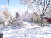 Clemmons snow
