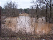 Flooding in Surry County