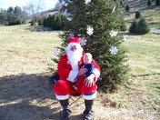 Miller's Christmas Tree Farm