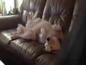 Samantha. relaxing