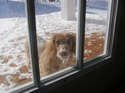 Hey let me in, it's cold out here