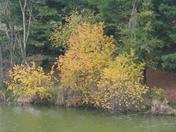 Oct2009 new camera 174.jpg