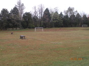 a lonely soccer field