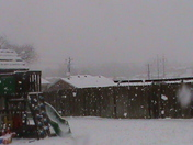 Snow fall 02072011.JPG