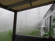 rain april 2011 023.JPG