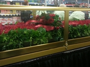 KY Derby Garland of Roses