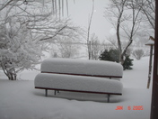 Feb 15 2010 001.jpg