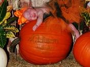 Pumpkin Patch Baby!