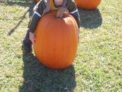 Logan at the pumpkin patch