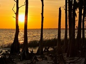 Sunset at Fontainebleau State Park