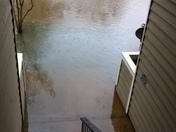Flooding in mandeville