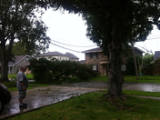 tree down and on wires no elec now