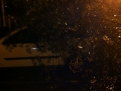 Pics from Isaac