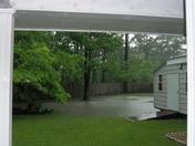 Backyard or Swimming Hole?