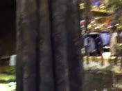 Bass Pro Shop Visit (funny to us)
