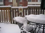 snow 2 28.JPG