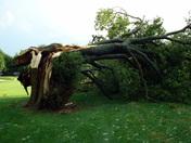 storm-7-16-2010.jpg