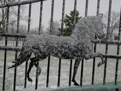 Horse on a Fence